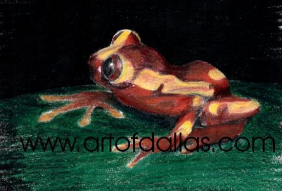 clownfrog